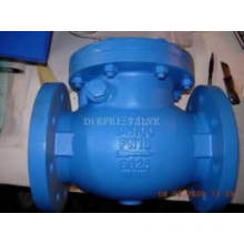 Stainless Steel ANSI Swing Check Valve